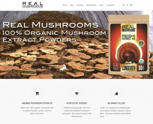 Real-Mushrooms-PPC-Case-Study-Amazon